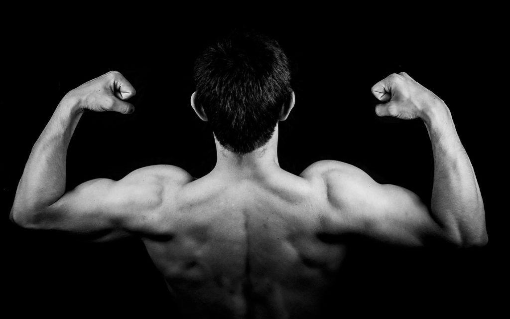 Back-biceps